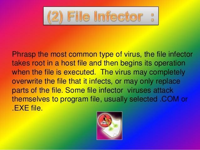 Presentation on Computer Viruses