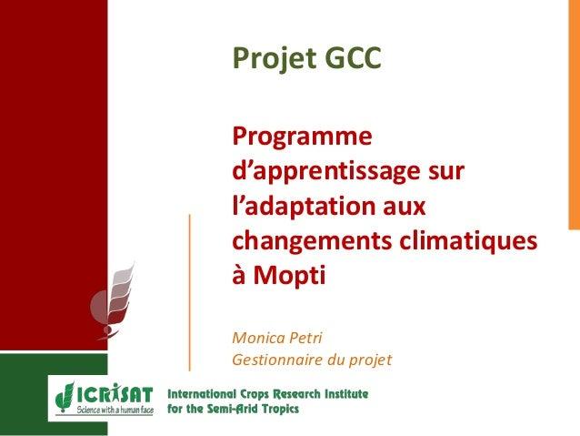 Projet GCC Programme d'apprentissage sur l'adaptation aux changements climatiques à Mopti Monica Petri Gestionnaire du pro...