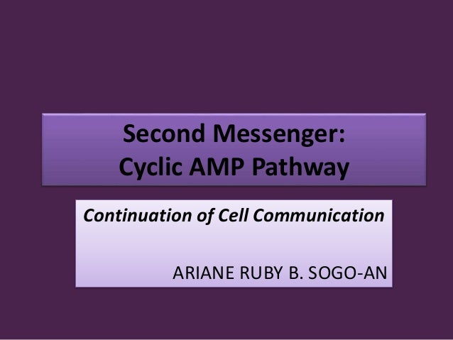 Second Messenger: Cyclic AMP Pathway Continuation of Cell Communication ARIANE RUBY B. SOGO-AN