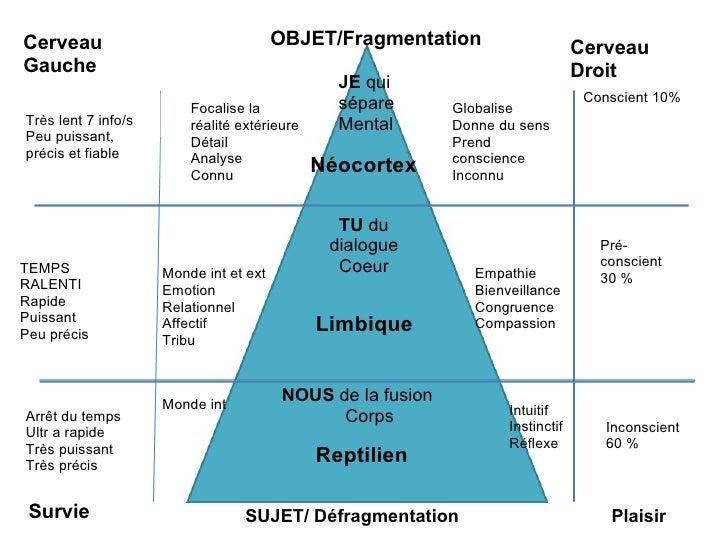 Néocortex Limbique Reptilien Cerveau Droit Cerveau Gauche OBJET/Fragmentation SUJET/ Défragmentation Conscient 10% Pré-con...