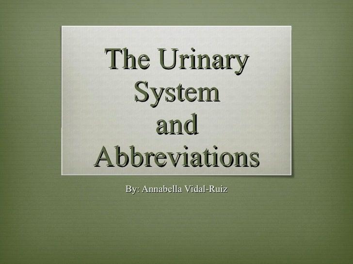 The Urinary System and Abbreviations By: Annabella Vidal-Ruiz