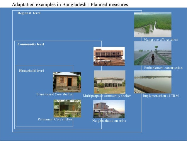related literature of mangrove afforestation This chapter provides an overview of mangrove management, assessment, and monitoring it addresses the need for integrated planning and management, based on sound legal principles the central .