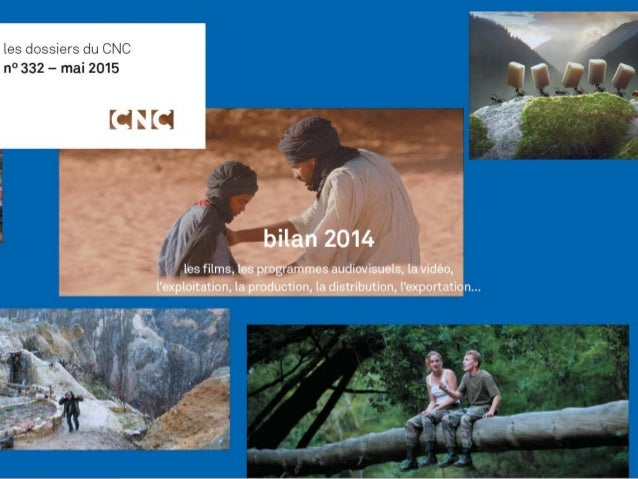 Le 6 mai 2015 bilan 2014 du CNC