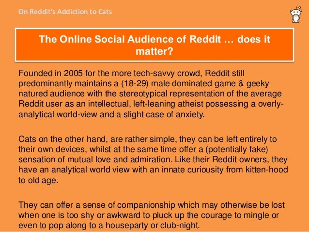On Reddit's addiction to cats