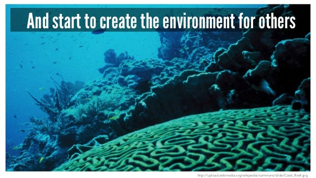 And start to create the environment for others http://upload.wikimedia.org/wikipedia/commons/d/de/Coral_Reef.jpg