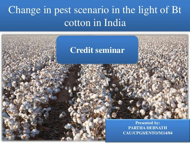 impact of bt cotton on the environment Economic and environmental impacts of bt cotton: evidence from pakistan khuda bakhsh institute of agricultural and resource economics university of agriculture,.