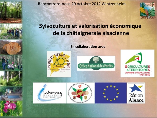 Rencontrons-nous 20 octobre 2012 WintzenheimSylvoculture et valorisation économique     de la châtaigneraie alsacienne    ...