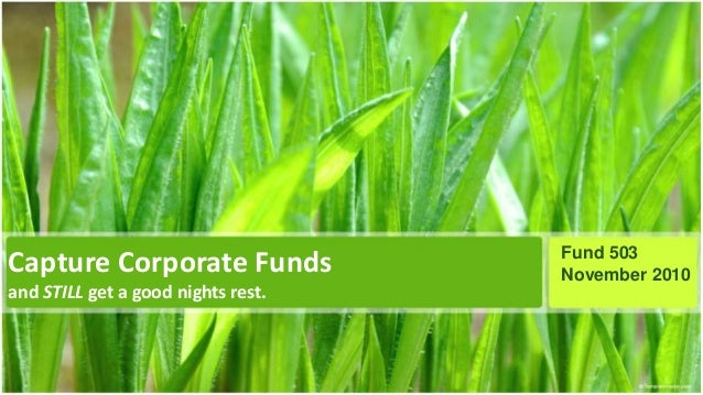 Capture Corporate Funds and STILL get a good nights rest. Fund 503 November 2010