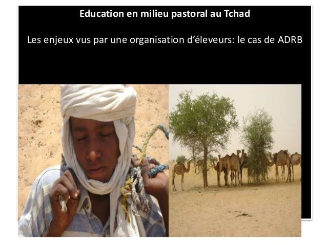 Education en milieu pastoral au Tchad Les enjeux vus par une organisation d'éleveurs: le cas de ADRB
