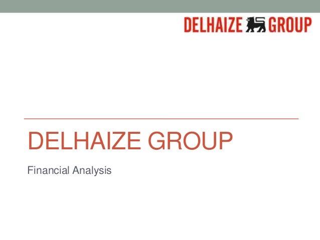 DELHAIZE GROUPFinancial Analysis