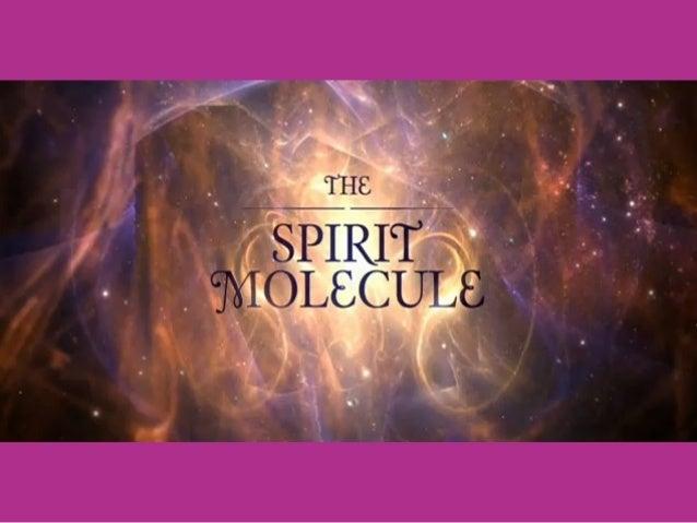 The Spirit Molecule Diretor: Mitch Schultz, 2010, 75 min