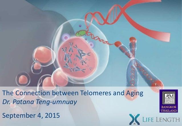 The Connection between Telomeres and Aging Dr. Patana Teng-umnuay September 4, 2015