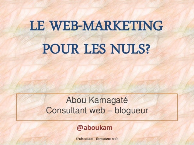 LE WEB-MARKETING POUR LES NULS? Abou Kamagaté Consultant web – blogueur @aboukam @aboukam - formateur web