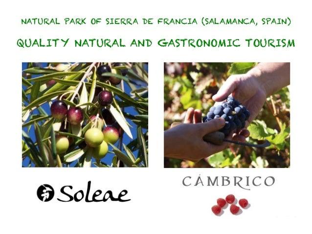NATURAL PARK OF SIERRA DE FRANCIA (SALAMANCA, SPAIN)QUALITY NATURAL AND GASTRONOMIC TOURISM