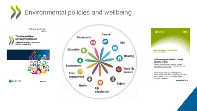 Environmental policies and wellbeing