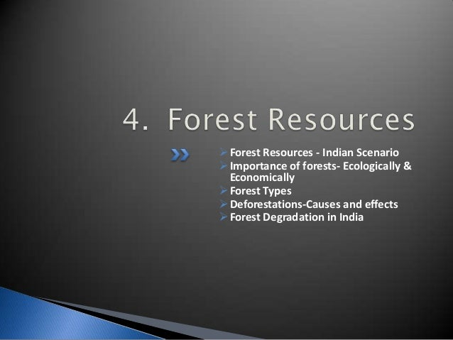 Natural Resources Temperate Deciduous Forest