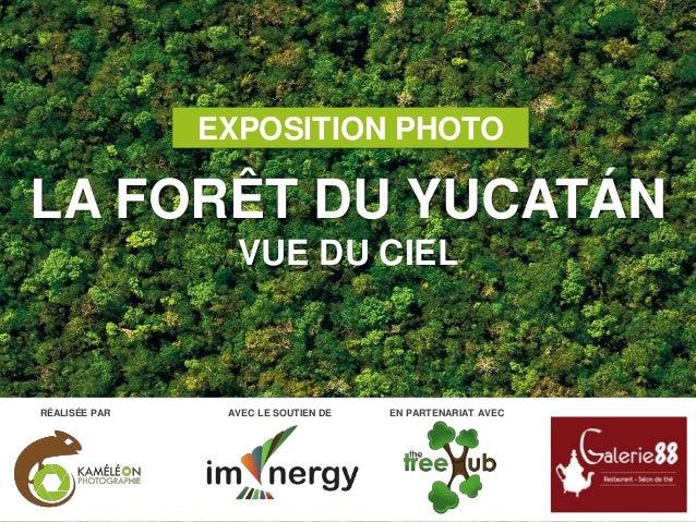 EXPOSITION PHOTO LA FORÊT DU YUCATÁN VUE DU CIEL AVEC LE SOUTIEN DE EN PARTENARIAT AVECRÉALISÉE PAR