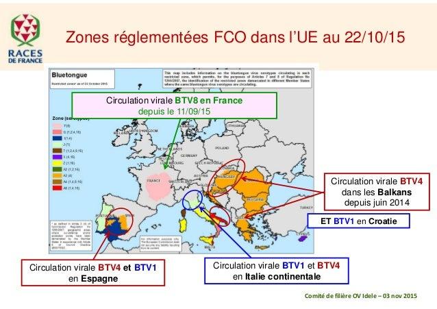 Zones réglementées FCO dans l'UE au 22/10/15 Circulation virale BTV4 dans les Balkans depuis juin 2014 Circulation virale ...