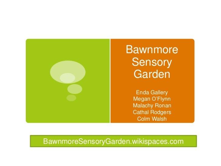 Bawnmore Sensory Garden<br />Enda Gallery<br />Megan O'Flynn<br />Malachy Ronan<br />Cathal Rodgers<br />Colm Walsh<br />B...