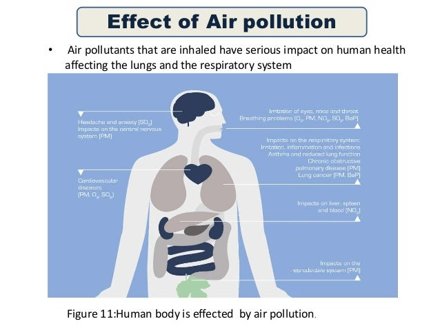 harm the environment of air pollution
