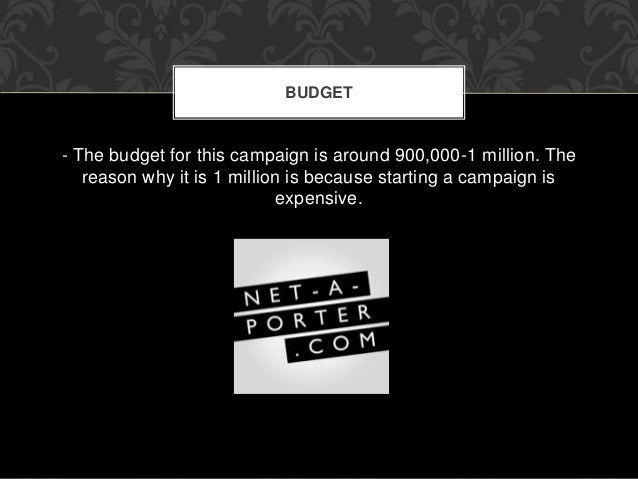 BUDGET  - The budget for this campaign is around 900,000-1 million. The  reason why it is 1 million is because starting a ...