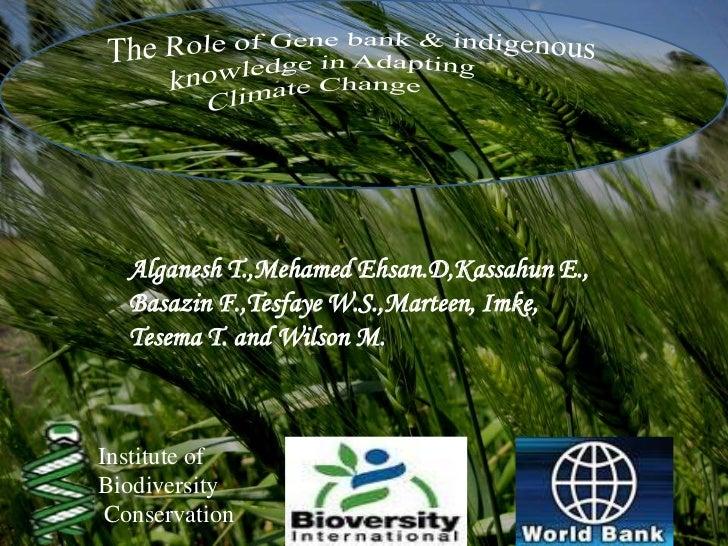 Alganesh T.,Mehamed Ehsan.D,Kassahun E.,  Basazin F.,Tesfaye W.S.,Marteen, Imke,  Tesema T. and Wilson M.Institute ofBiodi...