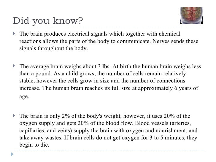 Did you know? <ul><li>The brain produces electrical signals which together with chemical reactions allows the parts of the...