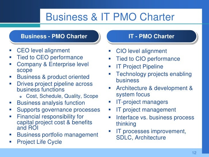 business pmo it pmo what is the difference