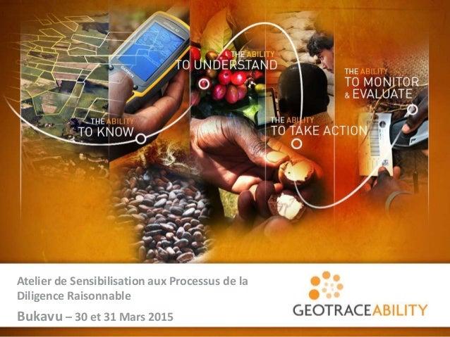 1 Atelier de Sensibilisation aux Processus de la Diligence Raisonnable Bukavu – 30 et 31 Mars 2015