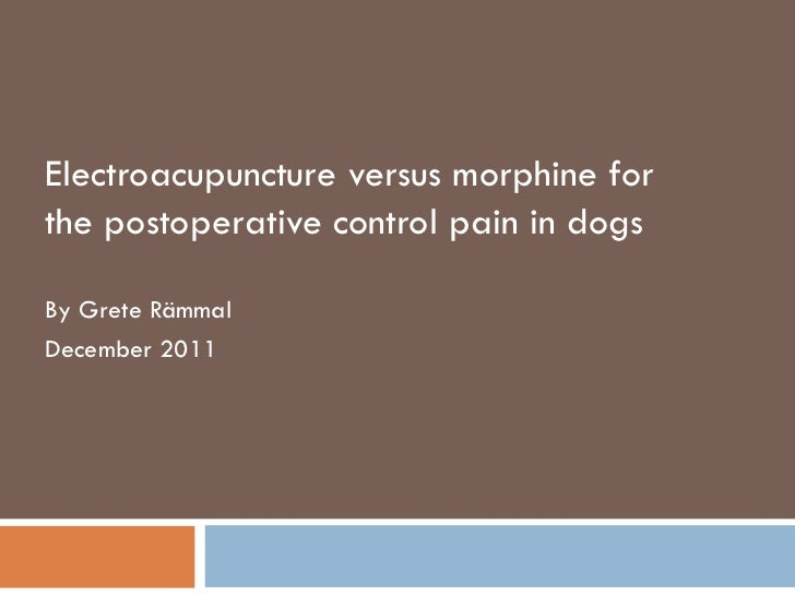 Electroacupuncture versus morphine for the postoperative control pain in dogs By Grete Rämmal December 2011
