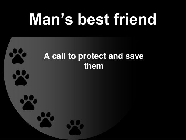 Man's best friend A call to protect and save them