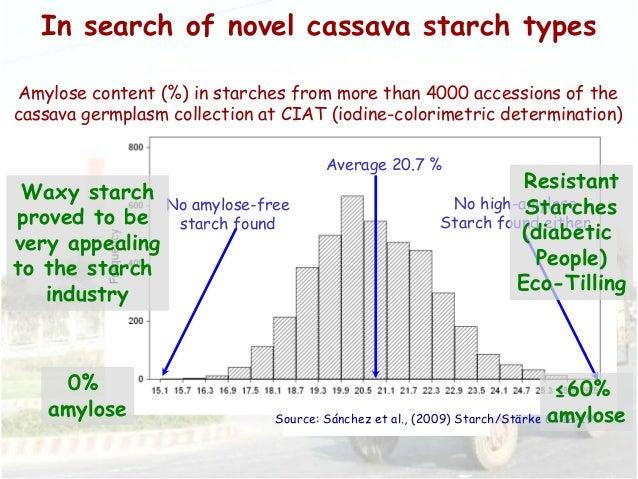 Cassava value chains workshop