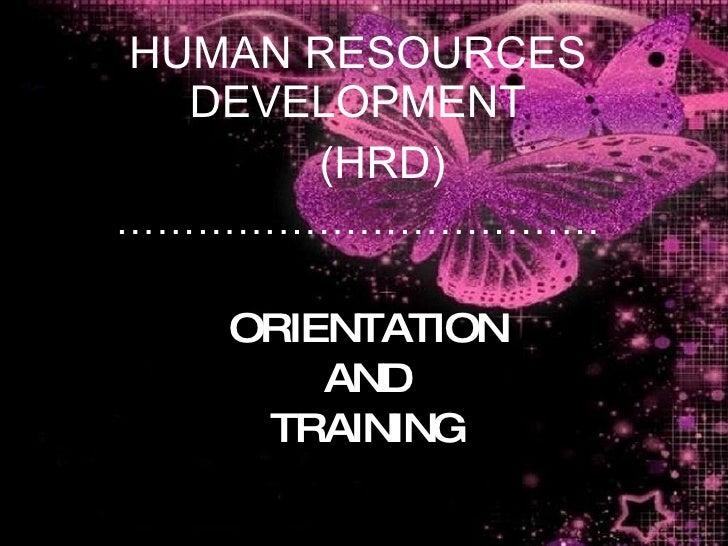 orientation  u0026 training