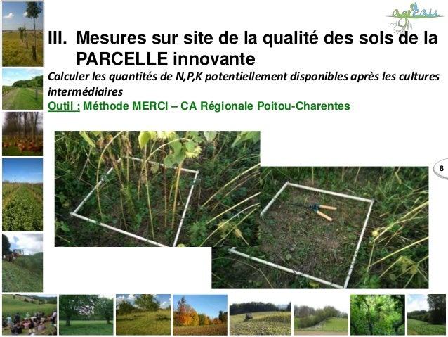 8 III. Mesures sur site de la qualité des sols de la PARCELLE innovante Calculer les quantités de N,P,K potentiellement di...