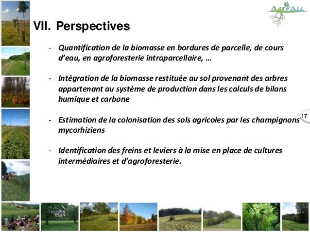 17 VII. Perspectives - Quantification de la biomasse en bordures de parcelle, de cours d'eau, en agroforesterie intraparce...