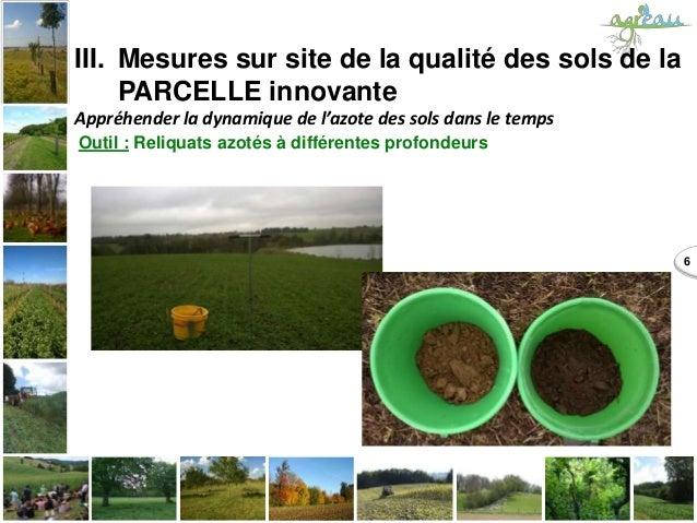 6 III. Mesures sur site de la qualité des sols de la PARCELLE innovante Appréhender la dynamique de l'azote des sols dans ...