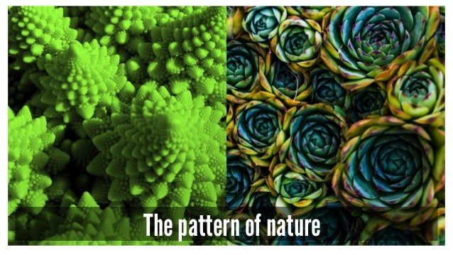 The pattern of nature