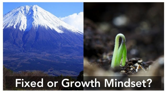 Fixed or Growth Mindset?