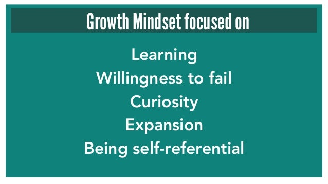 Learning Willingness to fail Curiosity Expansion Being self-referential Growth Mindset focused on