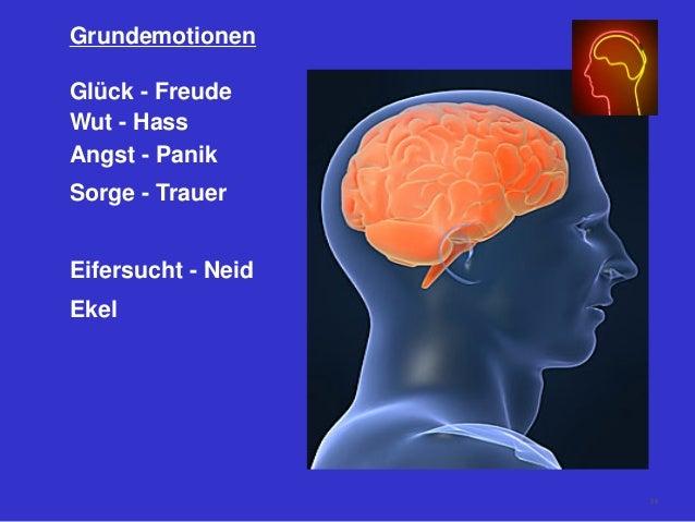 Grundemotionen Glück - Freude Wut - Hass Angst - Panik Sorge - Trauer Eifersucht - Neid Ekel 58