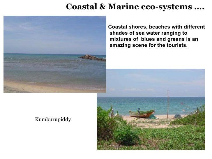 Coastal & Marine eco-systems …. <ul><li>Coastal shores, beaches with different </li></ul><ul><li>shades of sea water rangi...