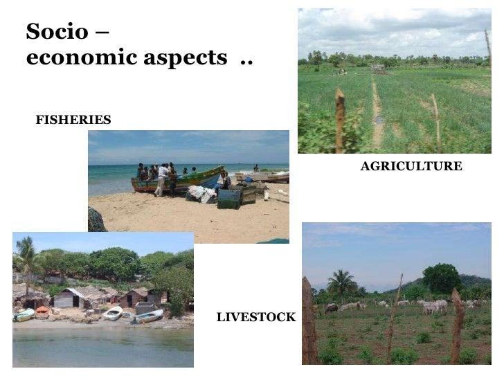 Socio –  economic aspects  .. FISHERIES AGRICULTURE LIVESTOCK