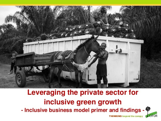 THINKING beyond the canopy Leveraging the private sector for inclusive green growth - Inclusive business model primer and ...