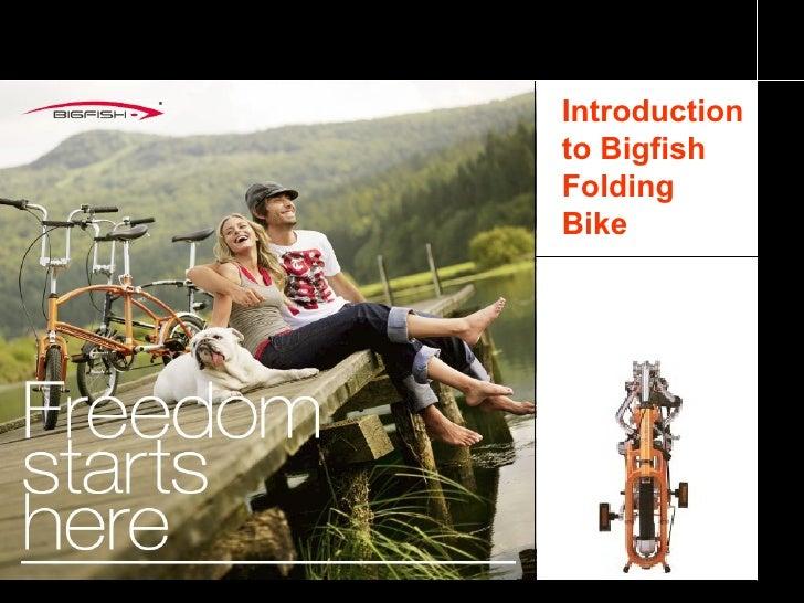 Introduction to Bigfish Folding Bike