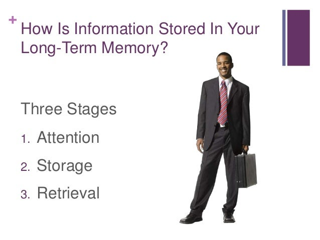 how does information stored in long term memory affect critical thinking How does information stored affect your critical thinking  how does information stored in your long-term memory affect how does information stored in your long.