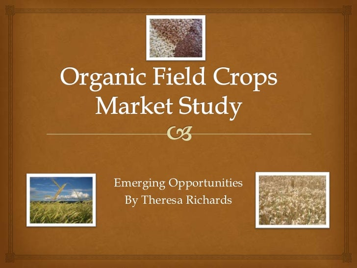Organic Field Crops Market Study<br />Emerging Opportunities<br />By Theresa Richards<br />