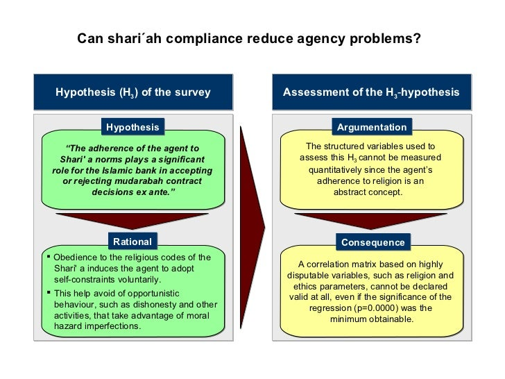 agency cost hypothesis