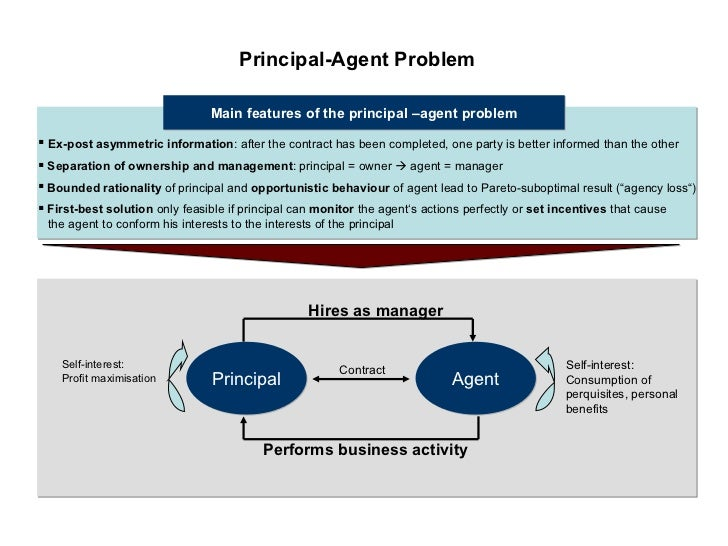 principal agency problem causes and costs