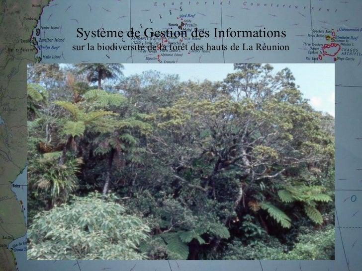 Système de Gestion des Informations sur la biodiversité de la for êt  des hauts de La Réunion