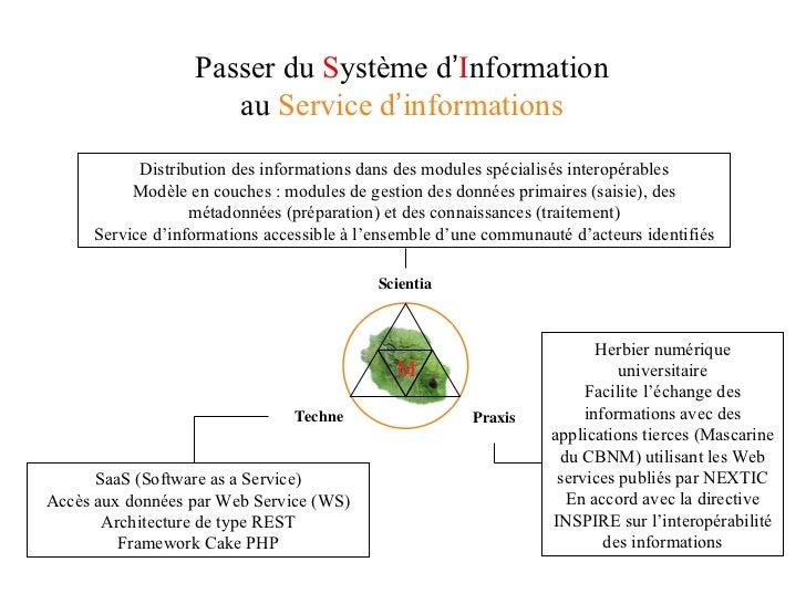 Passer du  S ystème   d ' I nformation au  Service   d ' informations SaaS (Software as a Service) Accès aux données par W...